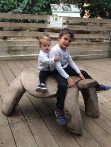enfant tortue bois